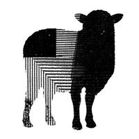 The Black Sheep Agency Logo